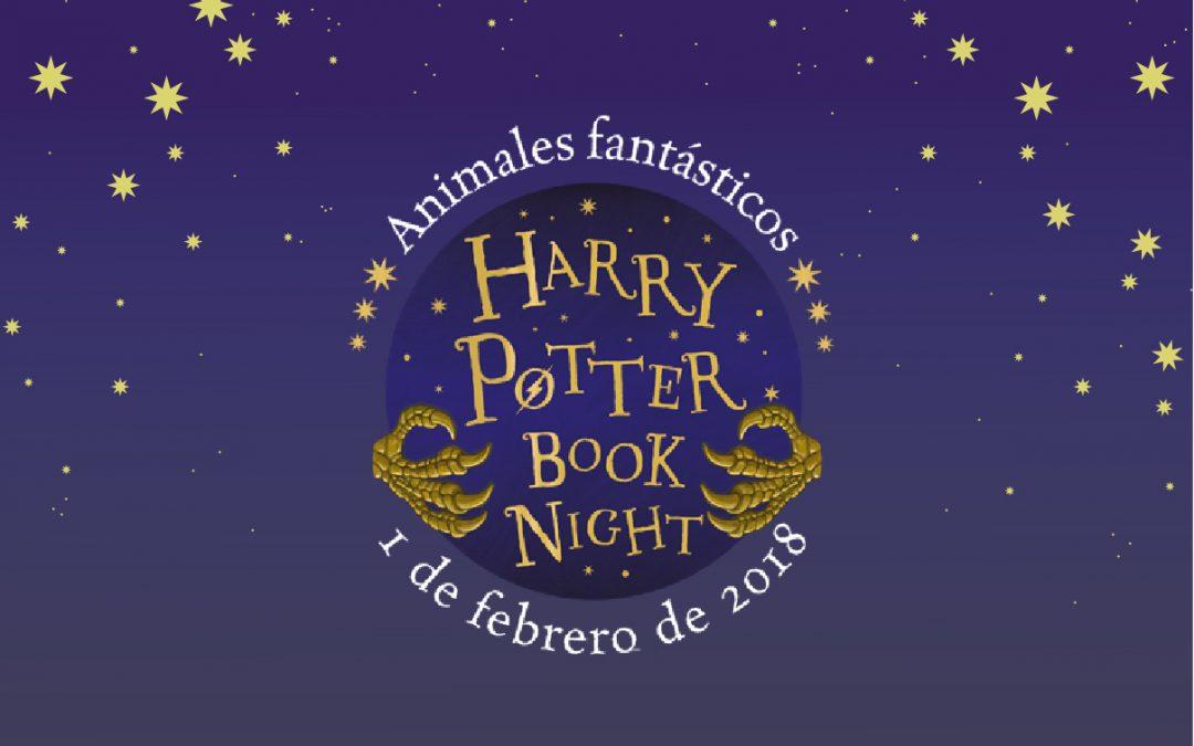 Harry Potter BookNight