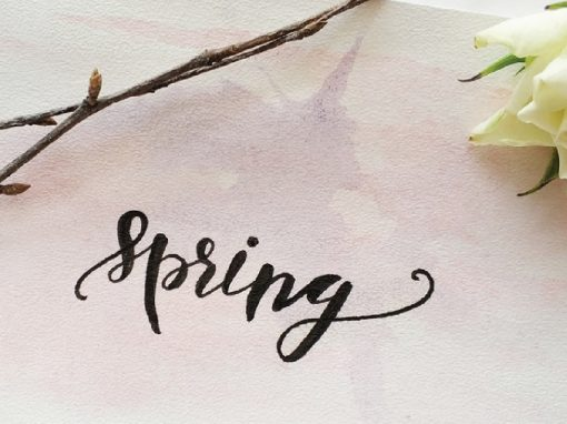 Lettering (sábados)