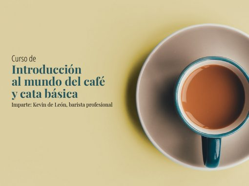 Introducción al mundo del café y la cata básica