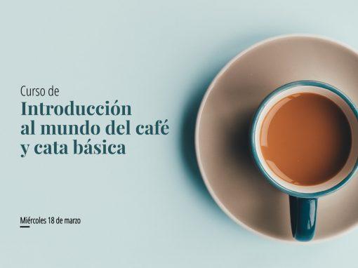 Curso: Introducción al mundo del café y cata básica