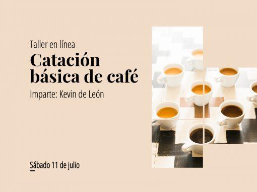 Taller en línea: Catación básica de café