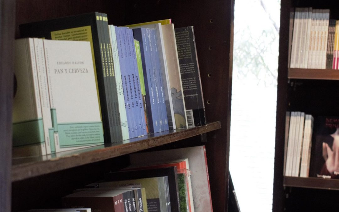 Mis libros y yo, segunda parte.